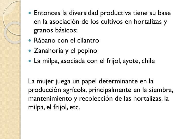 Entonces la diversidad productiva tiene su base en la asociación de los cultivos en hortalizas y granos básicos: