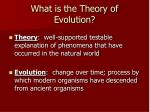 what is the theory of evolution
