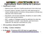 agriculture from doha to cancun