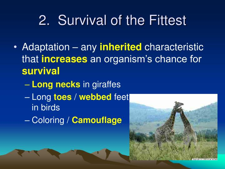 2.  Survival of the Fittest