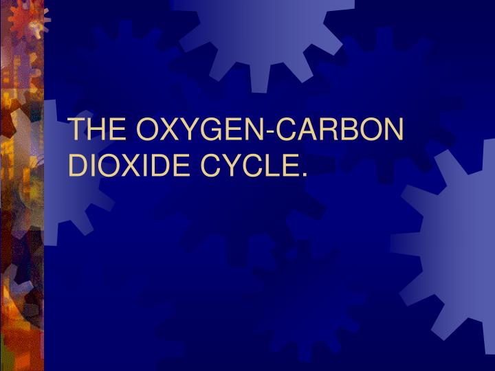 the oxygen carbon dioxide cycle n.