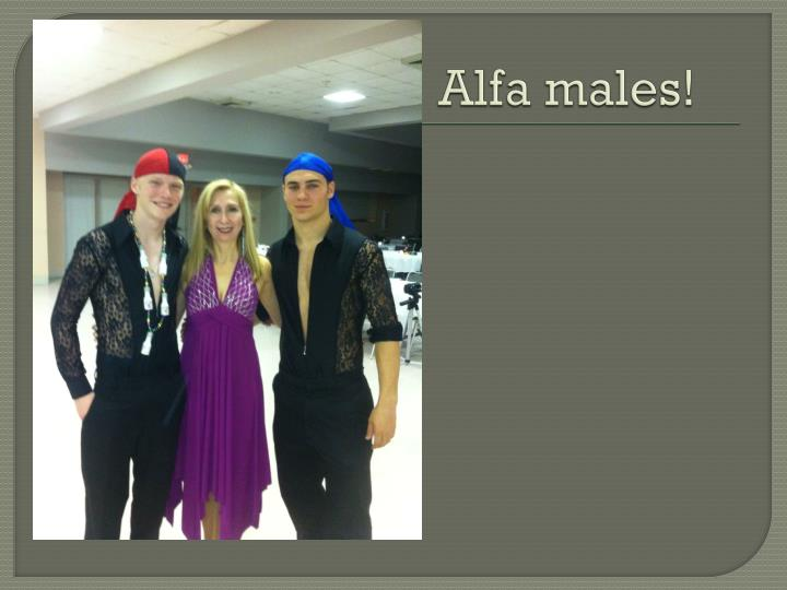Alfa males!