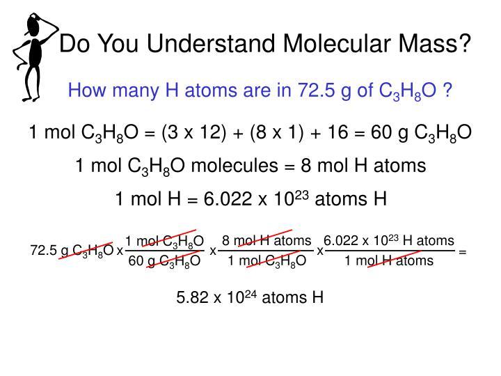 Do You Understand Molecular Mass?