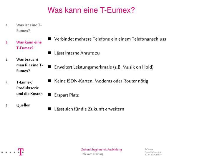 Was kann eine T-Eumex?