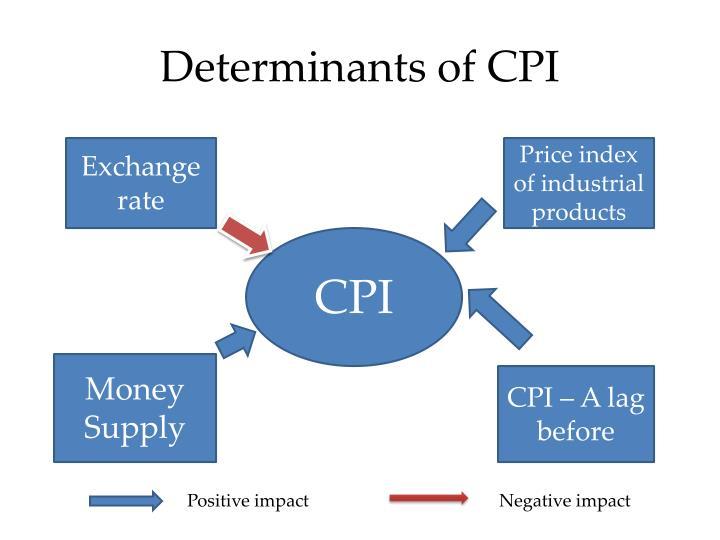 Determinants of CPI