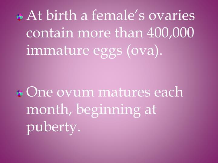 At birth a female's ovaries contain more than 400,000 immature eggs (ova).