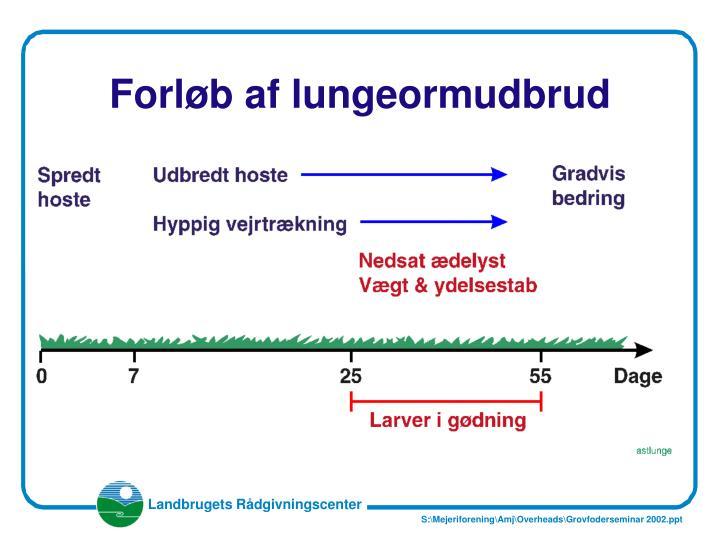 Forløb af lungeormudbrud