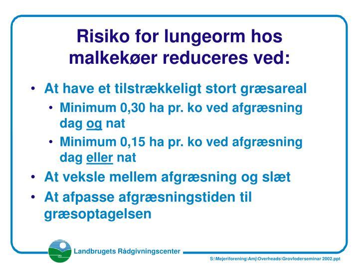 Risiko for lungeorm hos malkekøer reduceres ved: