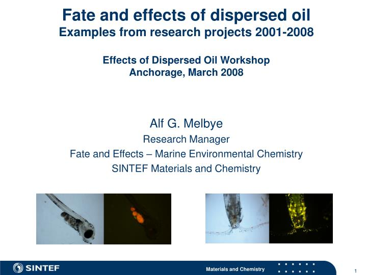 PPT - Alf G  Melbye Research Manager Fate and Effects