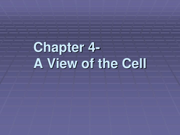 chapter 4 a view of the cell n.