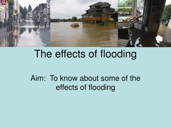 the effects of flooding n.