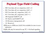 payload type field coding