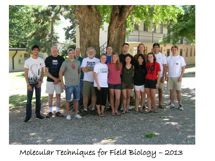 Molecular Techniques for Field Biology – 2013