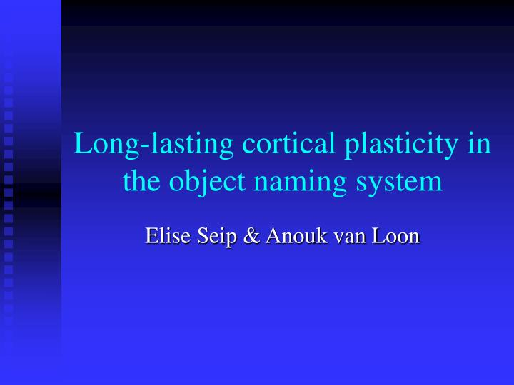 long lasting cortical plasticity in the object naming system n.