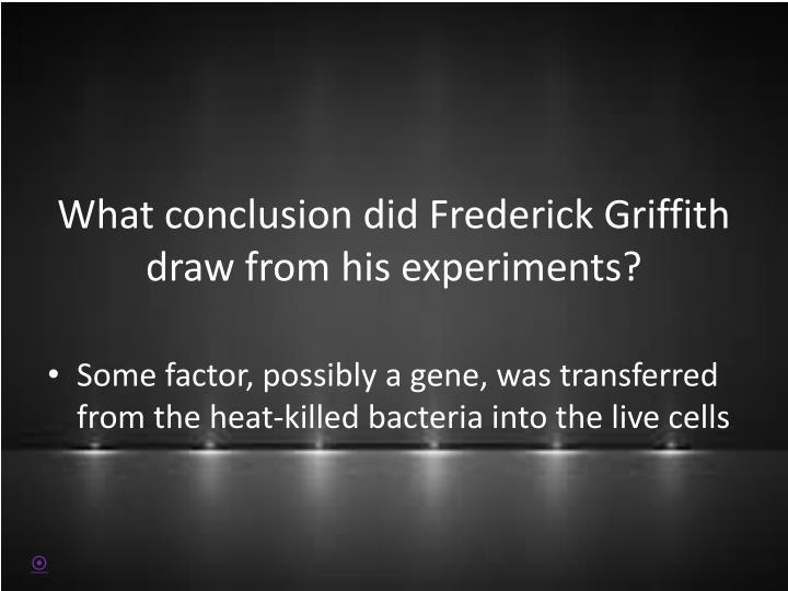 What conclusion did Frederick Griffith draw from his experiments?