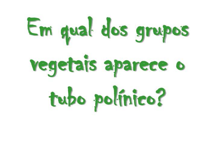 Em qual dos grupos vegetais aparece o tubo polínico?