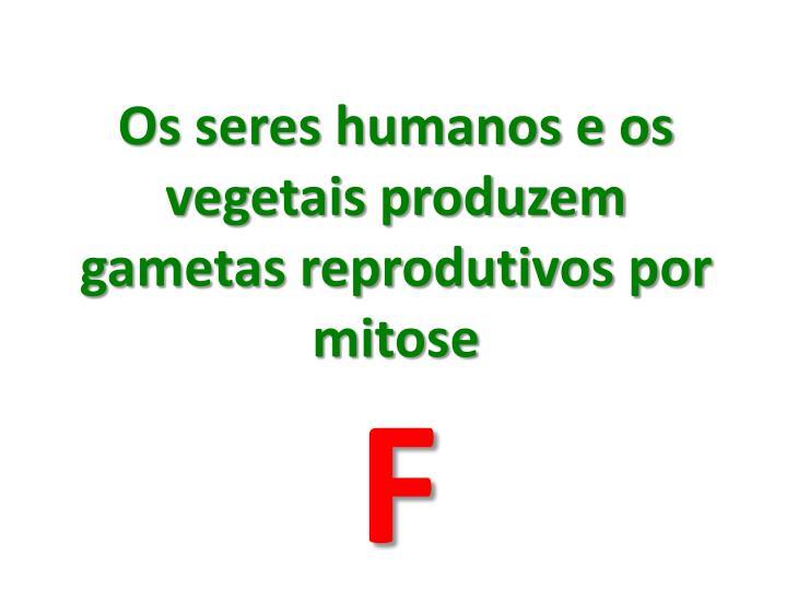 Os seres humanos e os vegetais produzem gametas reprodutivos por mitose