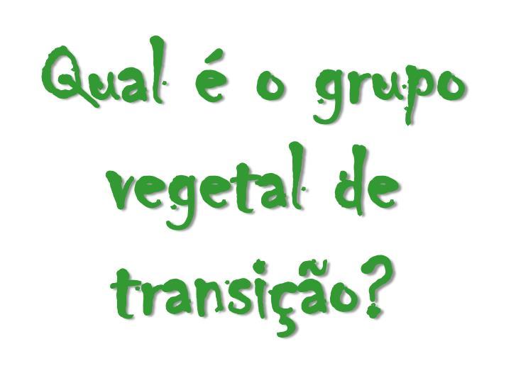 Qual é o grupo vegetal de transição?
