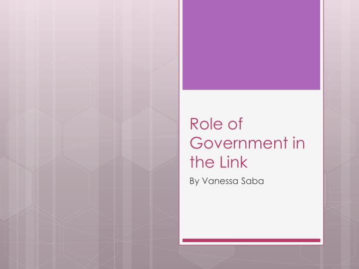 role of government in the link n.