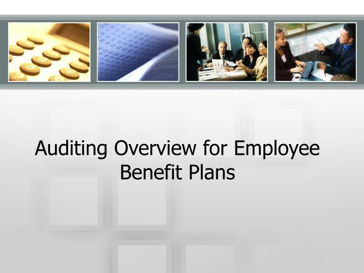 auditing overview for employee benefit plans n.