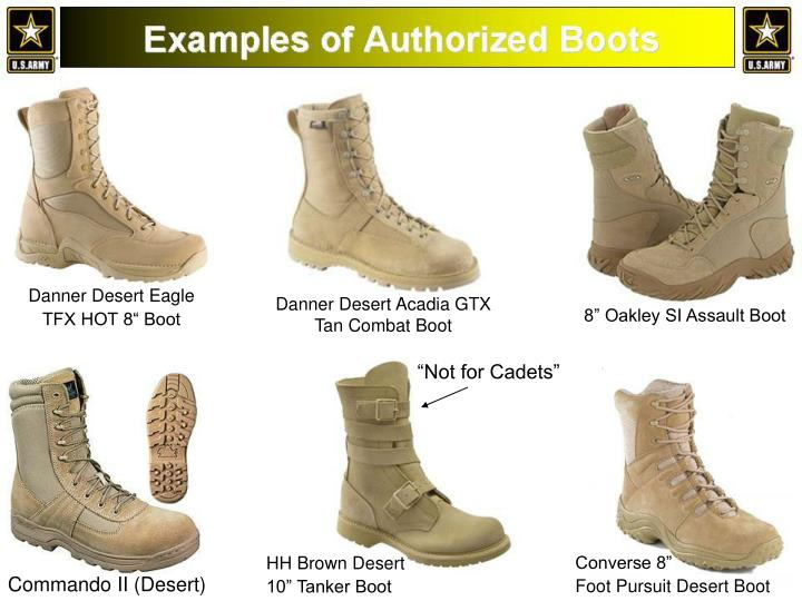 Ppt Hh Brown Desert 10 Tanker Boot Powerpoint