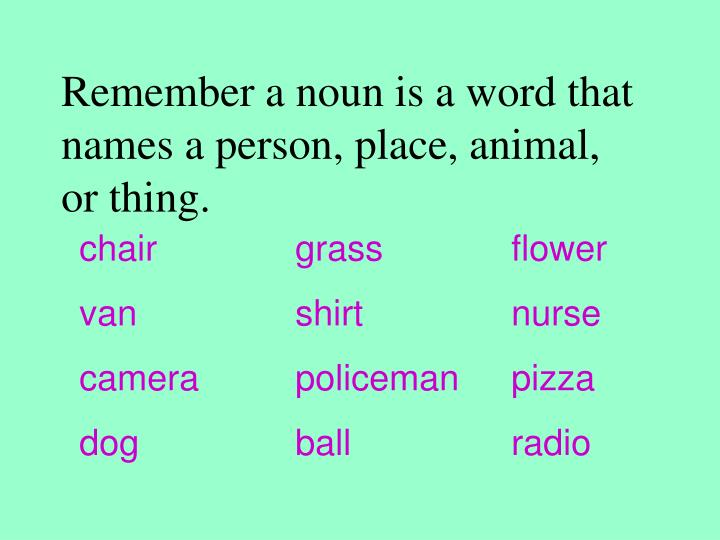 Remember a noun is a word that names a person, place, animal, or thing.