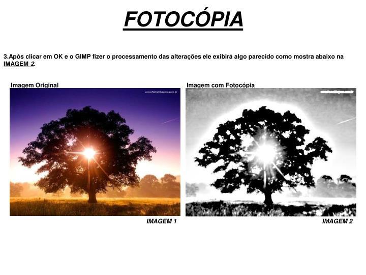 FOTOCÓPIA