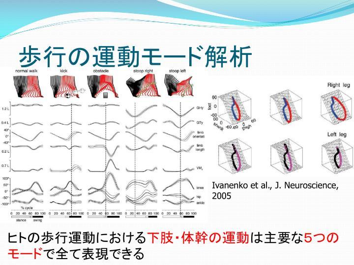 歩行の運動モード解析