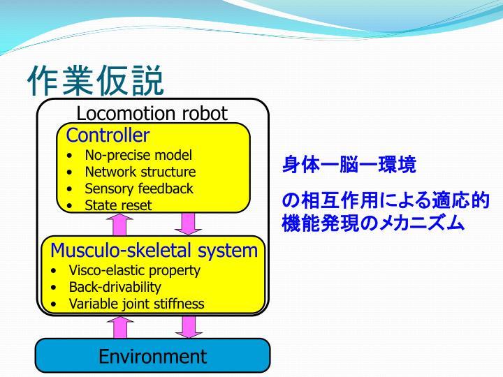 Locomotion robot
