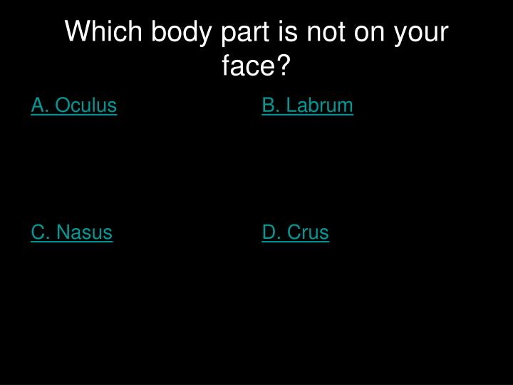 Which body part is not on your face?