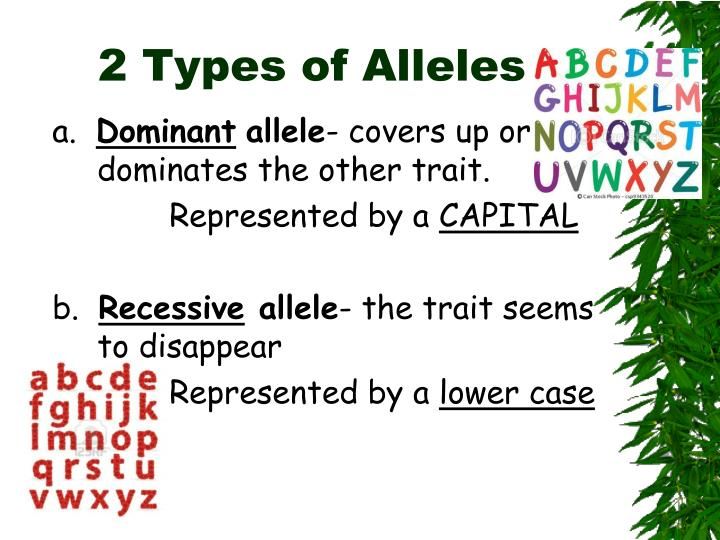 2 Types of Alleles