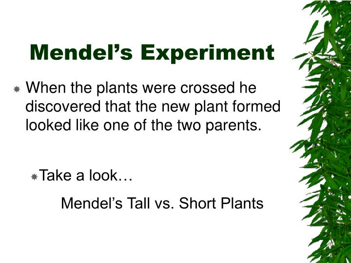 Mendel's Experiment