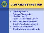 distriktsstruktur