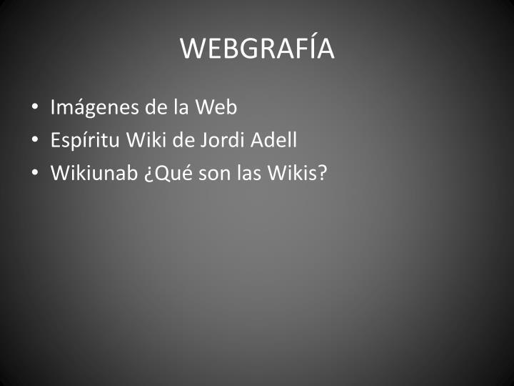 WEBGRAFÍA