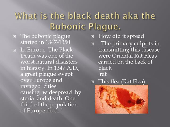 an overview of the black plague and the different forms of plagues The black death europe in the fourteenth and fifteenth centuries • overview of medieval europe – germanic/asiatic invasions (400's-700's ce.