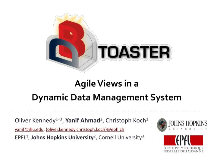 agile views in a dynamic data management system n.