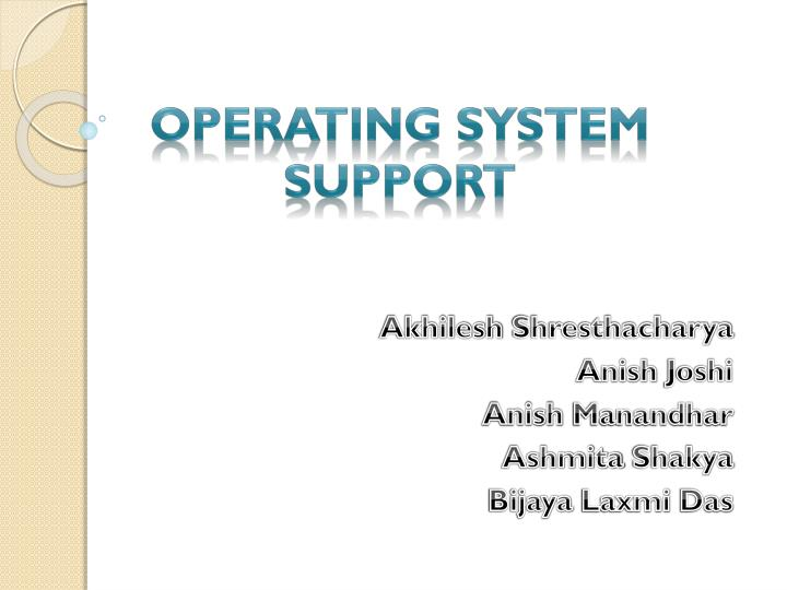 operating system support n.