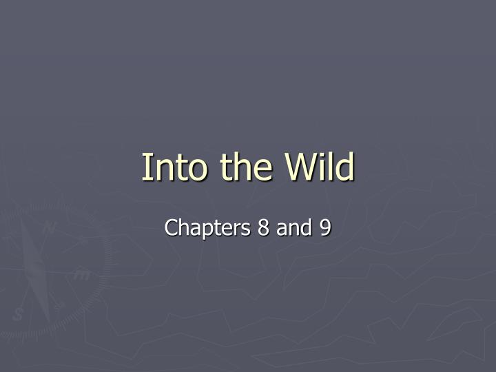 into the wild n.