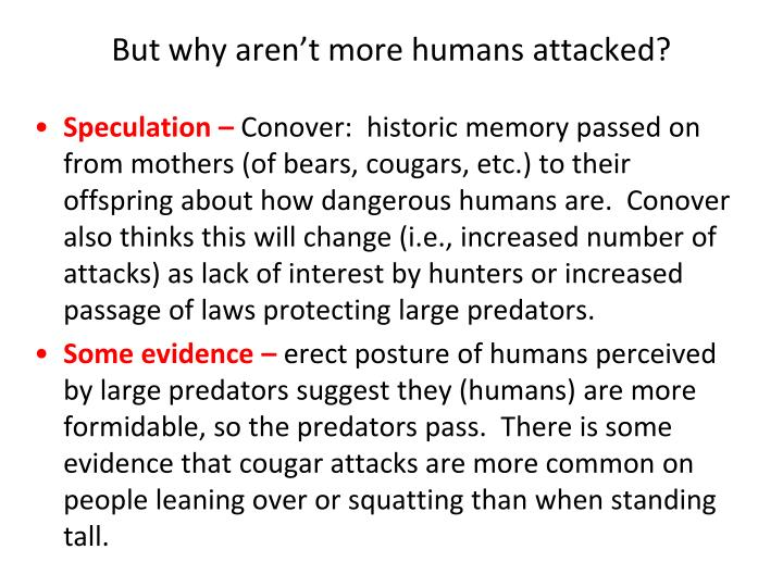 But why aren't more humans attacked?