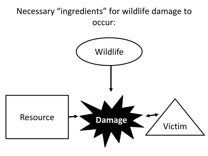 "Necessary ""ingredients"" for wildlife damage to occur:"
