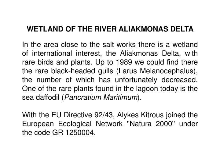 WETLAND OF THE RIVER ALIAKMONAS DELTA