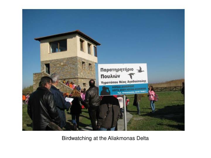 Birdwatching at the Aliakmonas Delta