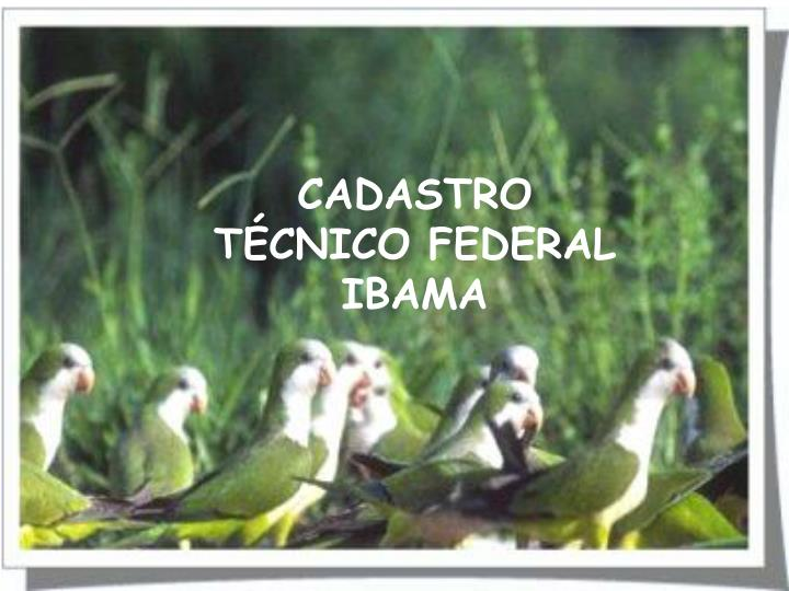 CADASTRO TÉCNICO FEDERAL IBAMA