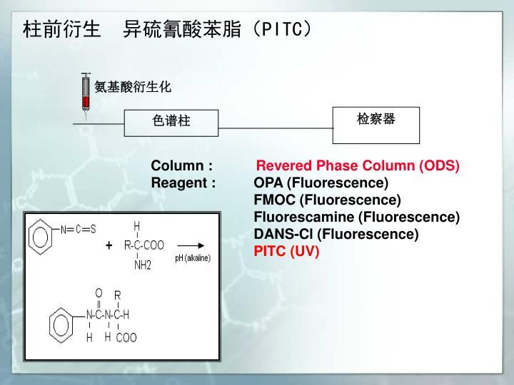氨基酸衍生化