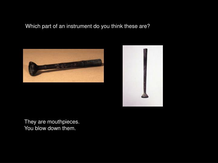 Which part of an instrument do you think these are?