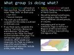 what group is doing what