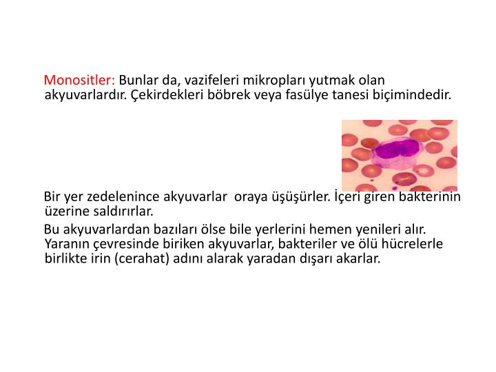 Monositler: