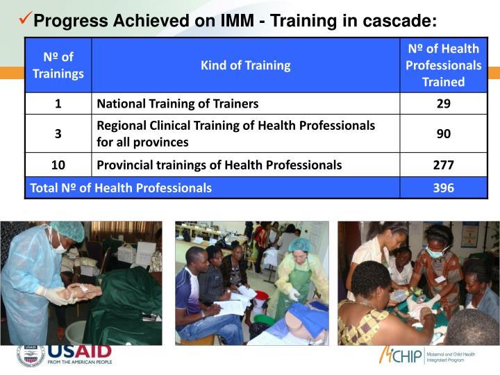 Progress Achieved on IMM