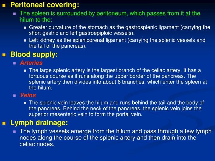 Peritoneal covering: