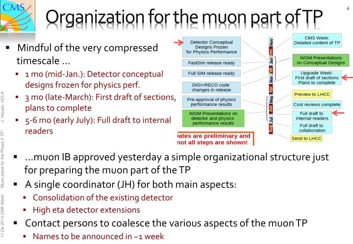 Organization for the muon part of TP